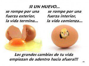 Si un huevo...